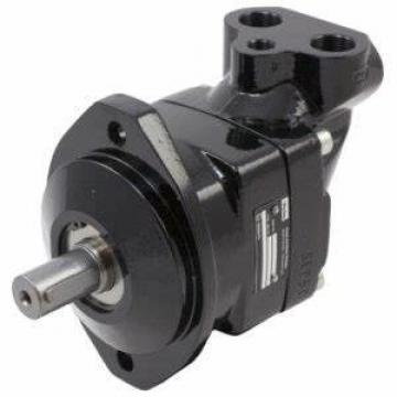 Germany imported original gear pump IPVP5-64-101 high pressure injection molding machine hydraulic oil pump